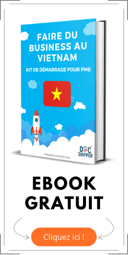 ebook gratuit business au vietnam
